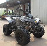 50cc/110cc/125cc Quad Bike