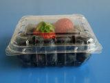 Коробка горячей голубики квадрата сбывания устранимой пластичной упаковывая для голубики 125 грамм