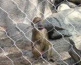 China, alambre de acero inoxidable de malla de cuerda Zoo