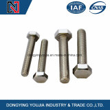 DIN933 Acier inoxydable Full Thread Hexagon Head Bolt