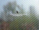 La pantalla de insectos Windows Mosquitera