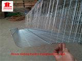 A e H Tipo de bateria de gaiolas de aves de capoeira para um uso mais longo