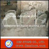 El ansia de desecho Desiged de granito natural para la lápida (DES-TB04)