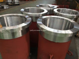 Motor elétrico à prova de explosões de aço inoxidável de 3 fases