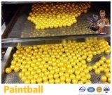 De beste Ballen Kogels/Paintball van Paintballs van de Kwaliteit voor Verkoop