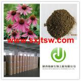 Echinaceaのエキス(4%)