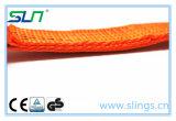 2018ストラップを打つ5tx9m直接製造業者の貨物