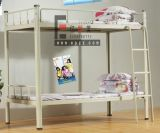 Schlafzimmer Furniture Steel Frame Bunk Bed für Student