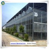 Для использования внутри помещений овощей растет с алюминиевой рамкой стекла парниковых