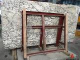 Новый голубой сляб мрамора льда для Countertop, украшения стены