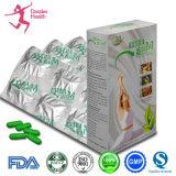 Extrato da planta que Slimming a perda de peso dos comprimidos da dieta da cápsula