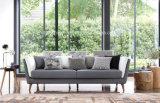 Sofá Cx6001-3 de la tela de la sala de estar de los muebles del hogar del diseño moderno