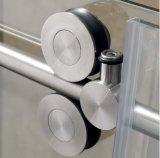 Роскошная европейская комната ливня приложения ливня двери ливня ванной комнаты 8mm типа сползая