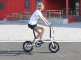 実用的な電気自転車(16F01)を折る36V 5速度の援助
