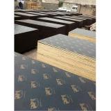 Película Negra enfrenta el contrachapado para la construcción de edificios