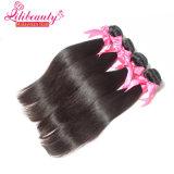 100%の人間の毛髪の束の良質のバージンのマレーシア人の毛