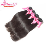 Cabelo do Malaysian do Virgin da boa qualidade do pacote do cabelo humano de 100%