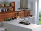 Gabinete de cozinha UV Shinning branco da cor (ZX-020)