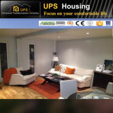 装飾および機能が付いているグループの生きている容器によって組立て式に作られる家