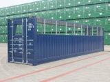 40 pieds de cube de haut Cowtainer