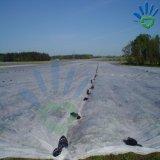 Ткань PP Spunbond Non-Woven с UV продуктами для сада и земледелия, крышки завода, управления Weed, сада защищает--Бежевый Vegetable защищать 50GSM