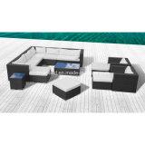 Sofà esterno per il giardino con i cuscini/SGS (9502)