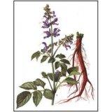 Dan acides phénoliques B Salvia miltiorrhiza extrait pour la lutte contre les infections