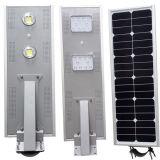 Lumières extérieures actionnées solaires toutes de DEL dans des réverbères un avec les panneaux solaires