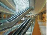 Крытый эскалатор для торгового центра