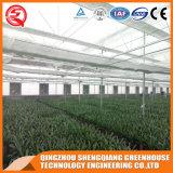 Casa verde de vidro hidropónica da flor vegetal comercial de Venlo