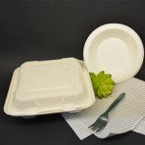 Отлитый в форму пульпой Biodegradable контейнер коробки обеда