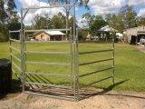 Bewegliche runde Rohr-Viehbestand-Panels für Vieh