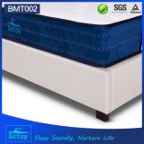 OEM High Quality Mattress Sizes 26cm High with Relaxing Pocket Spring and Massage Wave Foam Layer