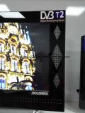 """19 """" горячая продавая конструкция Gigital СИД TV"""