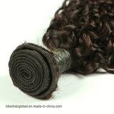 브라질 Virgin 머리 몽고 꼬부라진 자연적인 비꼬인 사람의 모발