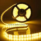 Striscia calda di riga 5050 LED del doppio di vendita