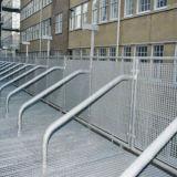 安全塀のための反錆の鋼鉄格子