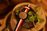 方法スマートなレディース・ウォッチストラップデザイン習慣および人の腕時計