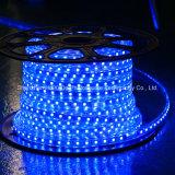青いカラー60LEDs SMD5050 220V IP65 LEDロープライト