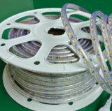 IP67 5050 Luz de LED SMD impermeável com alto lúmen