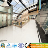 新しい到着の床および壁(SP6300T)のための中間の白い磨かれた磁器のタイル600*600mm
