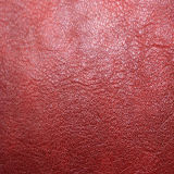 [هيغقوليتي] [بو] جلد لأنّ أحذية أو حقائب ([هتس024])