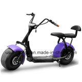 Motociclo elettrico del motorino dei 2017 nuovi di disegno della gomma Cochi grassi della città con il prezzo di fabbrica