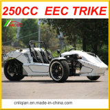 250cc motocicleta Trike Ztr
