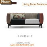 Teem Diseño de estar de cuero moderno del sofá de