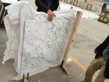 Из белого мрамора Thassos, красивого белого мрамора Thassos