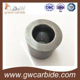 La boccola dell'asta cilindrica del carburo di tungsteno collega l'asta cilindrica con un manicotto per il cuscinetto della pompa