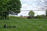 Сетка проволочной изгороди Sailin шестиугольная