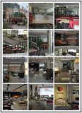 Sofá italiano do couro genuíno da sala de visitas moderna traseira elevada da sustentação (SBL-9221)