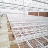 成長するプラント温室キットのCommerialの静止した温室のベンチのためのSeedbed